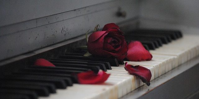 Image of a piano keyboard with a broken rose, signifying how a Camden & Meridew family law attorney can help you navigate divorce in Indiana.