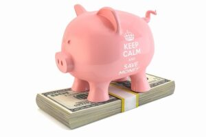 Image of a piggy bank sitting on a stack of dollar bills, representing how an Indianapolis bankruptcy lawyer from Camden & Meridew, P.C. helps debtors in central Indiana with bankruptcy and related proceedings.